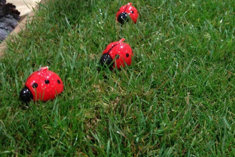 Ladybird Garden candles