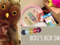 Boos blog box swap