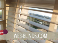 white wooden blinds