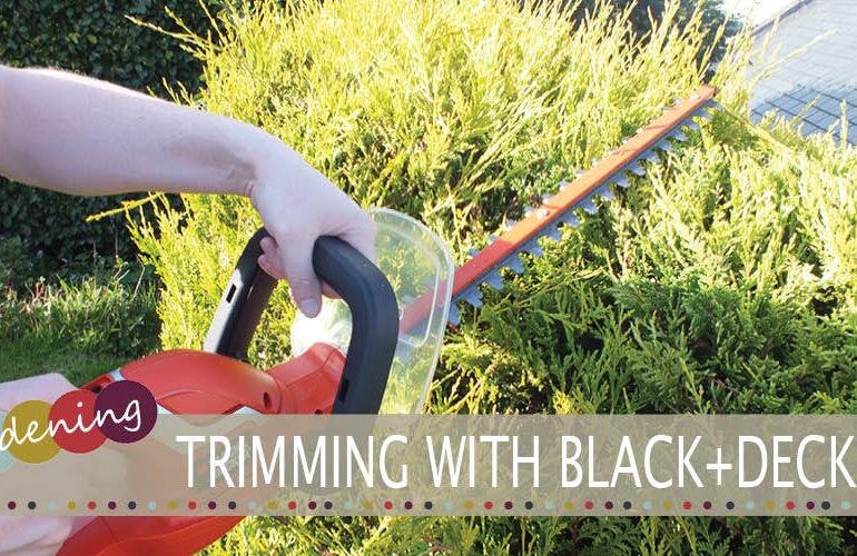 BLACK+DECKER Hedgetrimmer