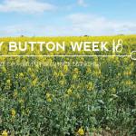 18 weeks pregnant blog