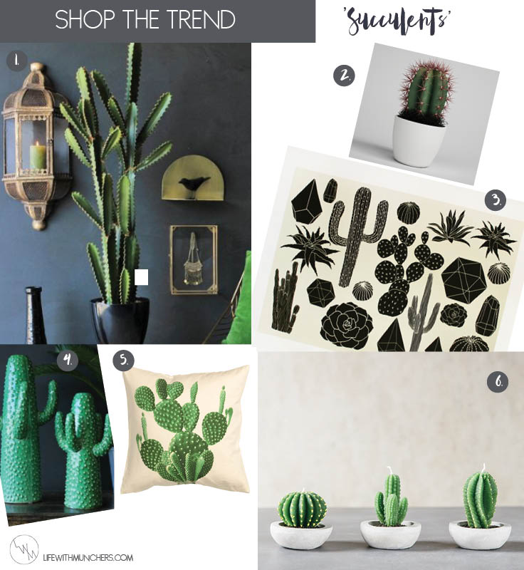 cactus home decor shop the trend family home lifestyle blog life with munchers. Black Bedroom Furniture Sets. Home Design Ideas