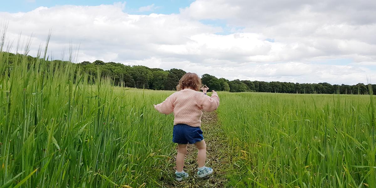 Vertbaudet Kids clothes Review