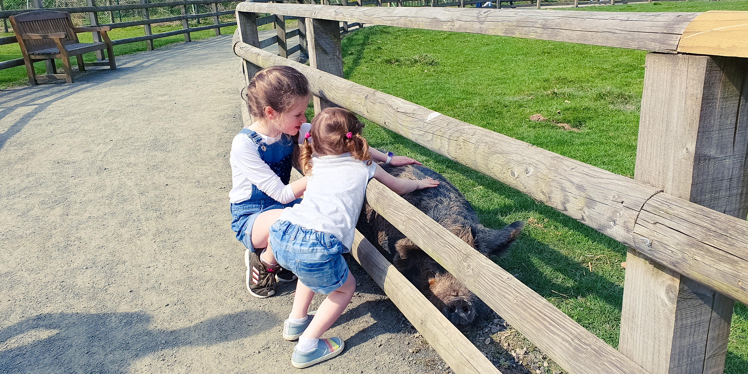 Blair Drummond Safari Park Review & tips